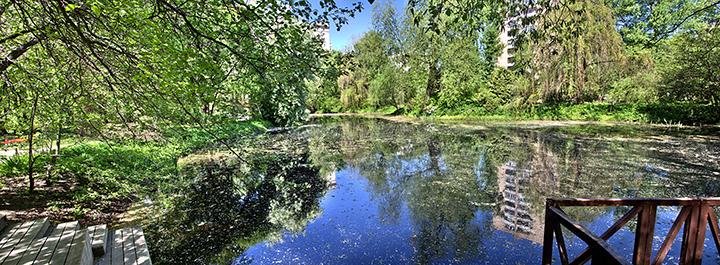 Dredging A Large Pond